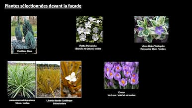 selection plantes jardinet by Décoration et Jardins